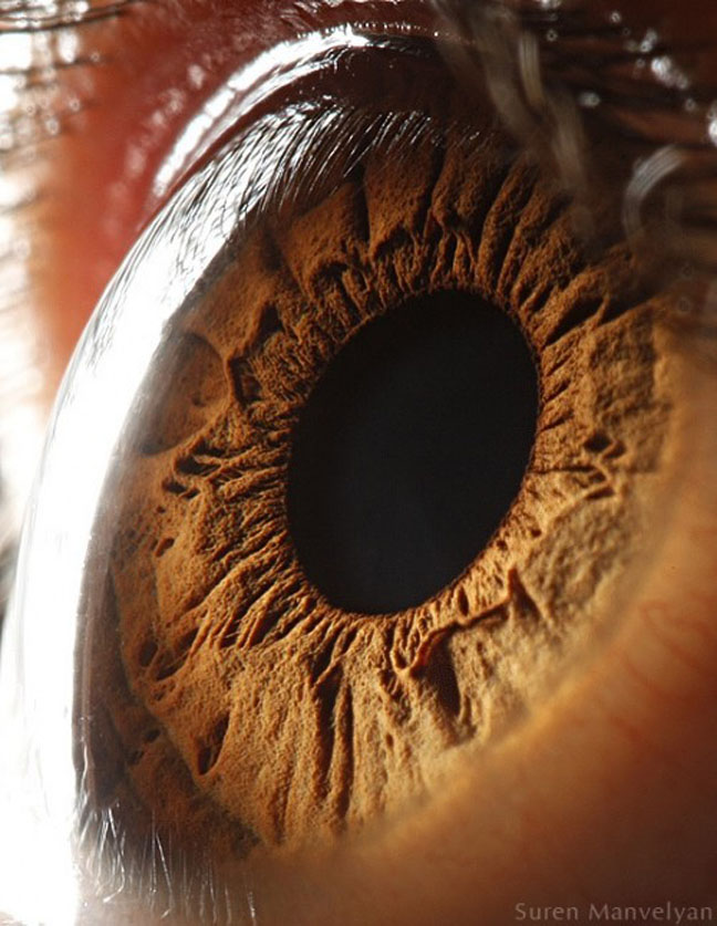 """Macro Eye Shots """"Like Surfaces of Other Planets"""" - Imprint Lab"""