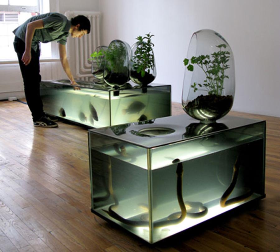 Brilliant floating garden keeps aquarium ecosystems for Garden with fish tank