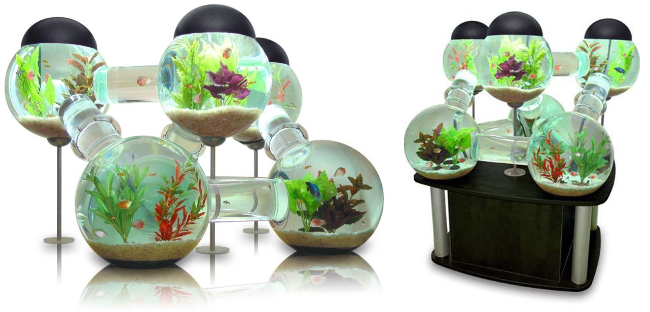 Labyrinth Fish Tank The Labyrinth Aquarium Design For The Wealthy Fish Owner