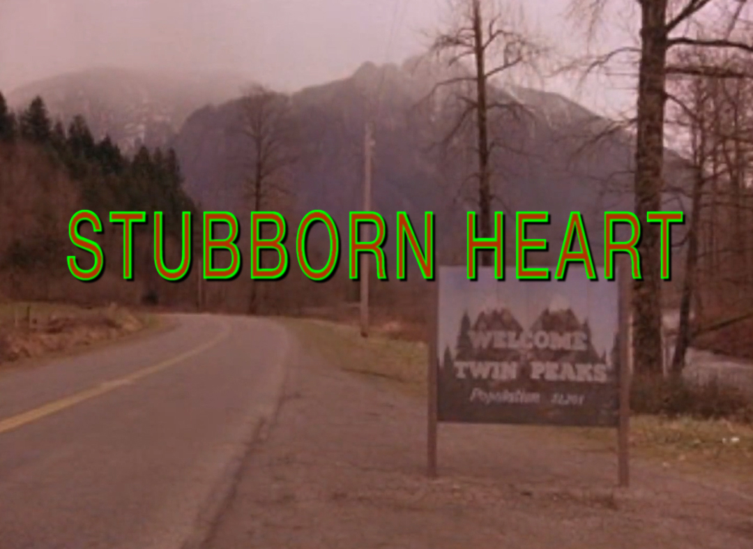 StubbornHeartLynch