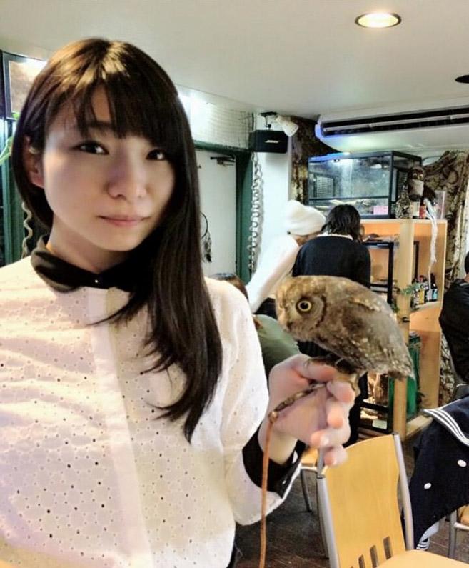 OwlCafe7
