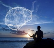 BrainHarvardMeditation