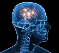 BrainNightTime