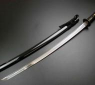 SamuraiScience
