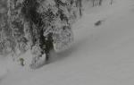 SnowLeopardSki