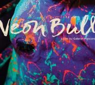 NeonBull0