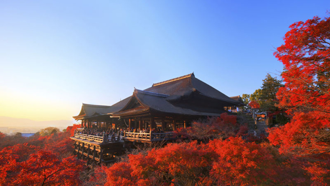 Win a dream Four Season vacation to Japan