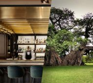 The Sunland Baobab Tree Pub in South Africa and ZONARS cafe in Athens Greece